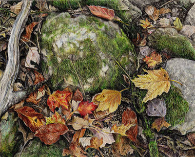 Soil Drawing - Nature's Confetti by Shana Rowe Jackson