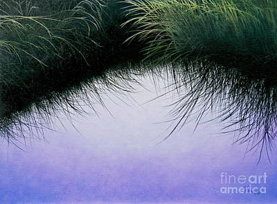 Nature's Eyelashes Art Print