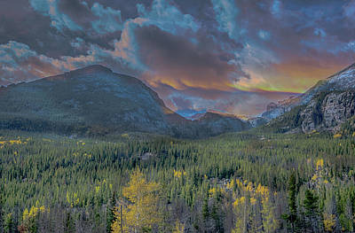 Photograph - Nature's Glory by Patricia Dennis