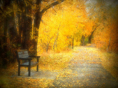 Photograph - Nature's Golden Corridor by Tara Turner