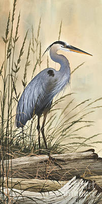Heron Painting - Nature's Harmony by James Williamson
