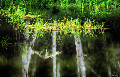 Photograph - Nature's Mirror by Dee Browning