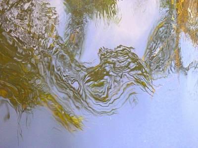 Natures Mirror Art Print by Florene Welebny