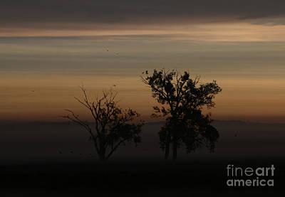 Photograph - Nature's Palette by Elizabeth Winter