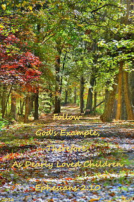 Photograph - Natures Pathway Ephesians 2 10 by Lisa Wooten