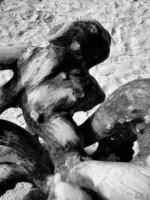 Photograph - Natures Sculpture by Sitara Bruns