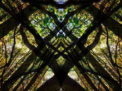 Photograph - Natures Stain Glass by JimO Ogilvie