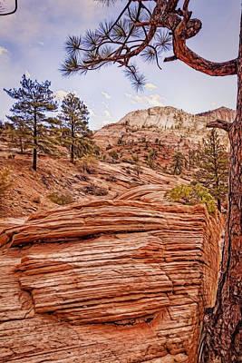 Photograph - Nature's Wake by John M Bailey