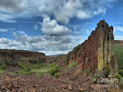 Photograph - Nature's Wall by Tara Turner