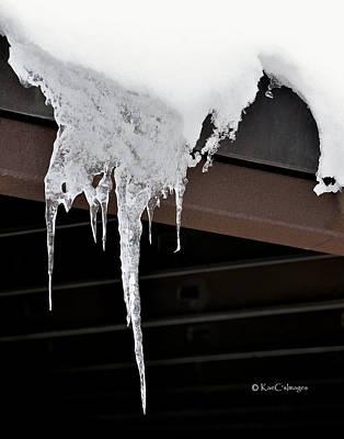 Photograph - Nature's Winter Abstract #4 by Kae Cheatham
