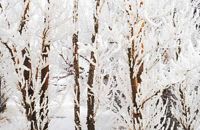 Digital Art - Nature's Winter Abstract by Kae Cheatham