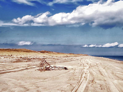 Photograph - Nauset Beach Driftwood Art by Constantine Gregory