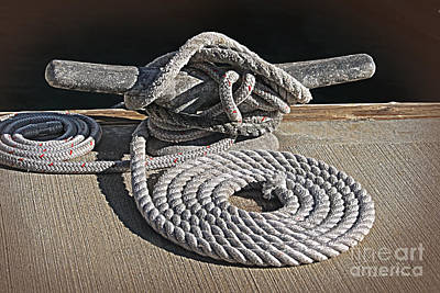 Photograph - Nautical Rope by Danuta Bennett