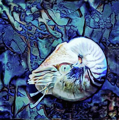 Mixed Media - Nautilus Blue by Susan Maxwell Schmidt