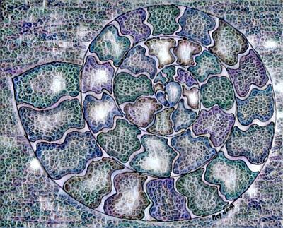 Digital Art - Nautilus Mosaic Digital by Megan Walsh