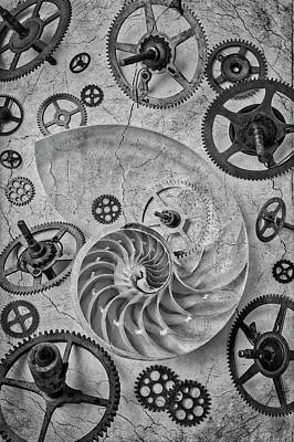 Photograph - Nautilus Shell And Gears by Garry Gay