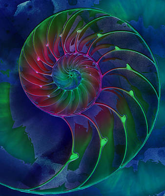 Digital Art - Nautilus Shell Blue Green Pink by Clare Bambers