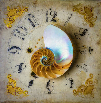 Photograph - Nautilus Shell On Old Clock by Garry Gay