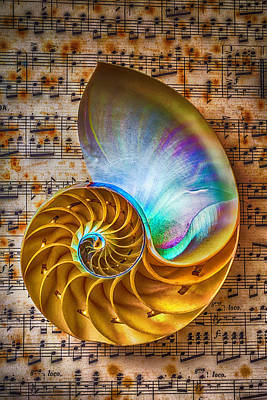 Notation Photograph - Nautilus Shell On Sheet Music by Garry Gay