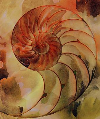 Digital Art - Nautilus Shell Orange Brown by Clare Bambers