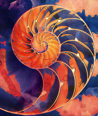 Digital Art - Nautilus Shell Orange Purple by Clare Bambers