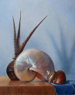 Wall Art - Painting - Nautilus Shell With Turbo Shell And Pheasant Feathers by Amanda Teicher