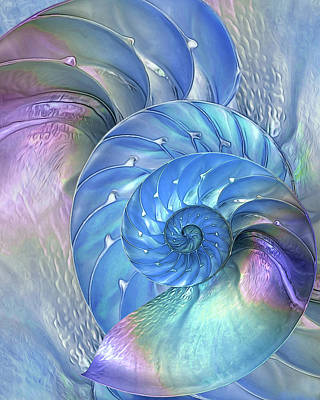 Nautilus Shells Blue And Purple Art Print by Gill Billington