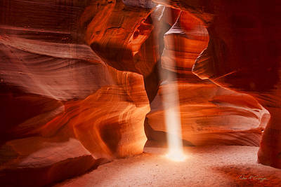 Photograph - Navajo Light by Dan McGeorge