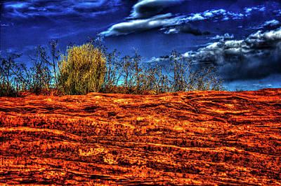Photograph - Navajo Sandstone At Horseshoe Bend by Roger Passman