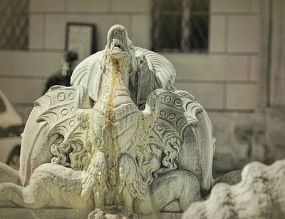 Photograph - Navona Dragon by JAMART Photography