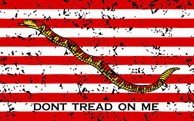 Landmarks Mixed Media - Navy Jack Flag - Don't Tread On Me by War Is Hell Store