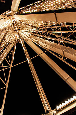 Animal Paintings David Stribbling - Navy Pier Ferris Wheel by Brian Kenney