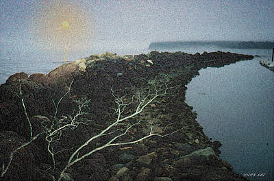 Neah Bay Photograph - Neah Bay by Yuri Lev