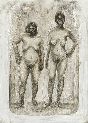 Reconstruction Photograph - Neanderthal And Homo Sapiens by Kennis & Kennis/MSF