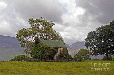 Photograph - near Killorglin by Cindy Murphy - NightVisions