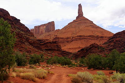 Photograph - Near Moab 5 by Marty Koch