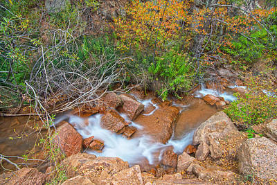 Photograph - Nearby Canyon  by Bijan Pirnia