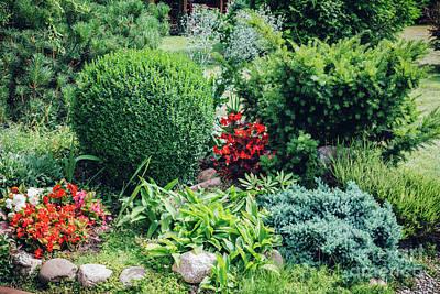 Photograph - Neat Flowerbed In A Home Garden. by Michal Bednarek
