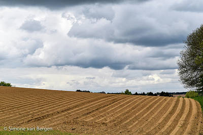 Photograph - Neatly Ploughed Field by Simone Van Bergen