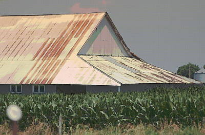 Nebraska Farm Life - The Tin Roof Original