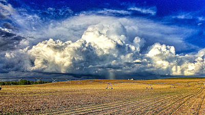 Photograph - Nebraska Thunderhead by Dan Miller