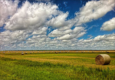 Nebraska Wheat Fields Art Print