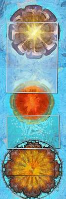 Slate Pattern Painting - Nebulising Pattern Flower  Id 16165-094555-05871 by S Lurk