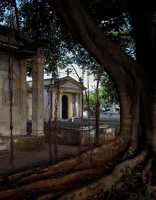 Photograph - Necropolis Cristobal Colon Havana Cuba Cemetery by Charles Harden