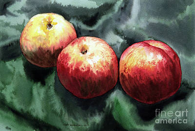 Painting - Nectarines by Joey Agbayani
