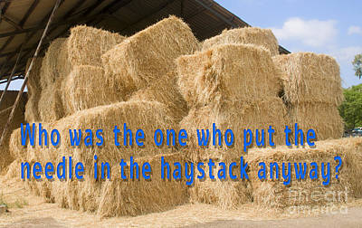 Needle In The Haystack Anyway? Art Print by Humorous Quotes