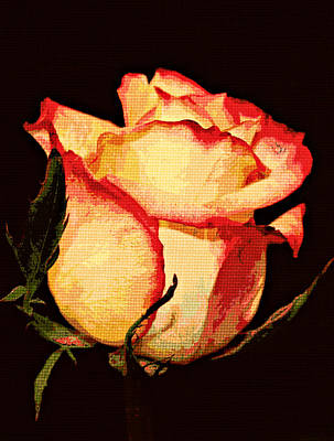 Bloom Art Mixed Media - Needlepoint Rose by Cathie Tyler