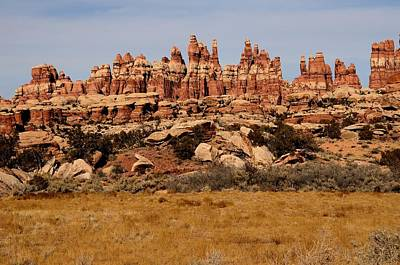 Photograph - Needles At Canyonlands by Tranquil Light  Photography