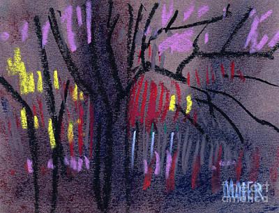 Neighbor's Lights Print by Donald Maier