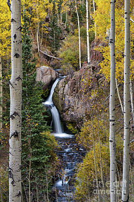 Photograph - Nellie Creek Waterfall In Fall by Tibor Vari